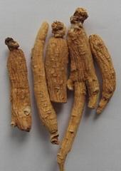 Organic ginseng root.etc