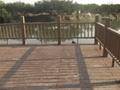 北京木塑地板