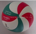 Micro Fiber Volleyball-Molten Panel