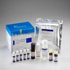 Salbutamol ELISA Diagnostic Kit