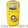 BW|H2S硫化氢气体检测仪