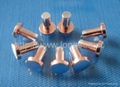 Composite Electrical Contact Rivet