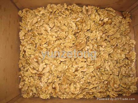 walnut kernel 1