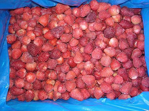 IQF strawberry 1