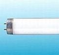 T8/T9/T10/T12 Fluorescent Lamp