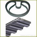 Automotive timing belt/ synchronous belt  1
