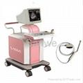 SW-1200 B Digital Ultrasound Scanner