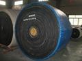 high temperature resistant conveyor belt 2