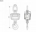 Crane Scale (OCS-XZ-GGE-pro) 3