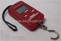 Portable fishing scale with cheap price