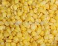 冷冻甜玉米