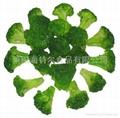 冷冻绿花菜