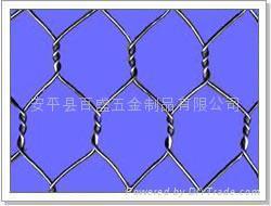六角网 2