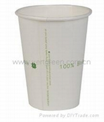 Biodegradable PLA paper Cup