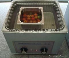 超聲波水果清洗機水果除農藥水果除氯