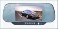 Sun Visor LCD/DVD Combo