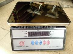 Zhongzi brand 30kg  electronic Weighing Scale