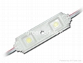 SMD5050 2LED Module IP65 DC12V White color for light box