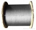 钢丝绳 1