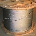 钢丝绳 3