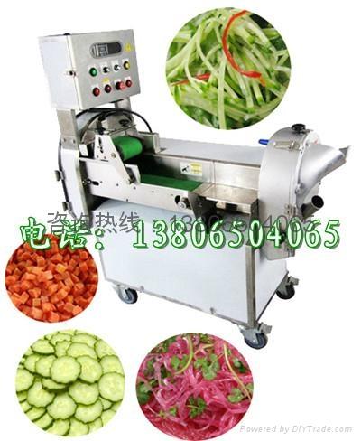 多功能切菜機 1