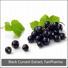 Blackcurrant Extract 35% Anthocyanins