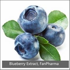Blueberry Extract 25% Anthocyanidins UV