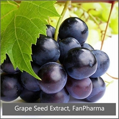 Grape Seed Extract 85% Polyphenols