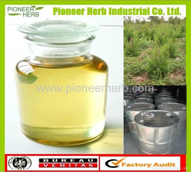 Tea Tree Oil  1
