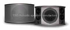 A-105 Pro audio speaker