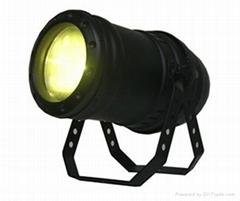 COB LED Par 100W/300W