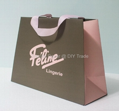 Paper Bag with Matt Lamination