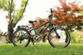 "26"" electric mountain bike CF-TDE03Z"