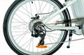 electric mountain bike CF-TDE01Z 2