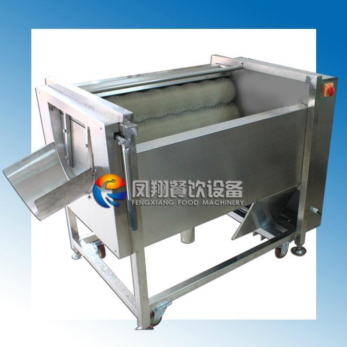 胡萝卜清洗脱皮机 (FXY-500) 1
