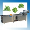 中型蔬菜清洗机