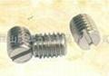 不鏽鋼開槽平端緊定螺絲 2