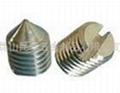 不鏽鋼開槽平端緊定螺絲 3