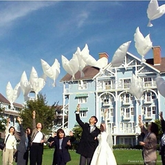 2014 Hot sale 100% biodegradable white Dove Balloons for wedding decoration