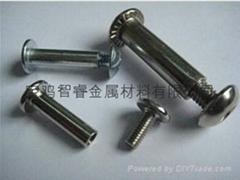 钛对锁螺丝