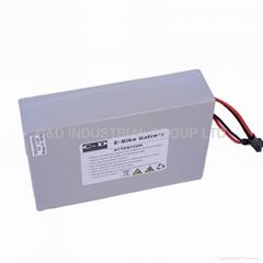 36V 48V 10AH 15AH 20AH lithium poly Li-on ebike battery