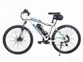 High quality low price 36V 250W electric