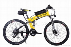 High quality low price electric bicycle