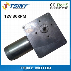 High-torque DC worm gear motor.dc gearbox reductor motor
