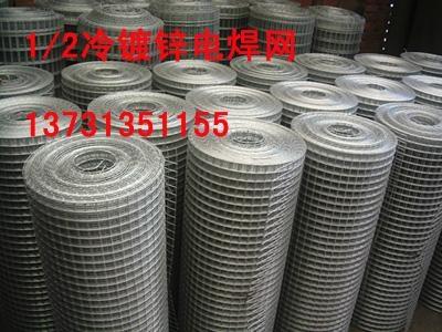 镀锌电焊网 2