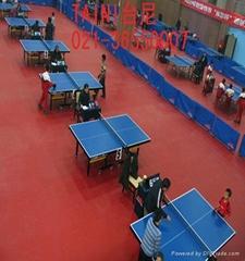 乒乓球地板