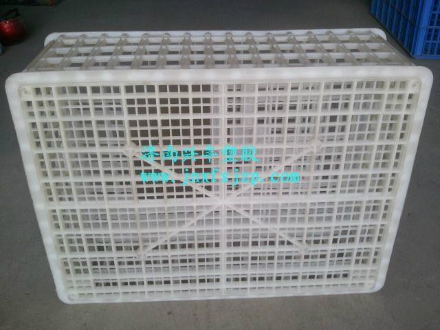 全新料塑料雞籠 5