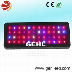 Super Quality And High Lumens 3W LED Grow Light For Growing Plants
