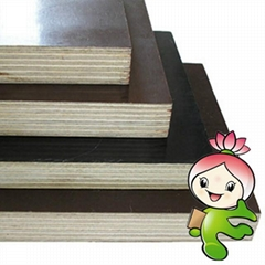 Film faced plywood.shutting plywood,Concrete formwork plywopod