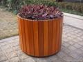 優質木花盆 1